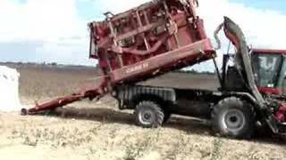 Watch Cotton Pickers Loser video