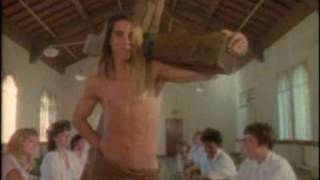 Watch Red Hot Chili Peppers Catholic School Girls Rule video
