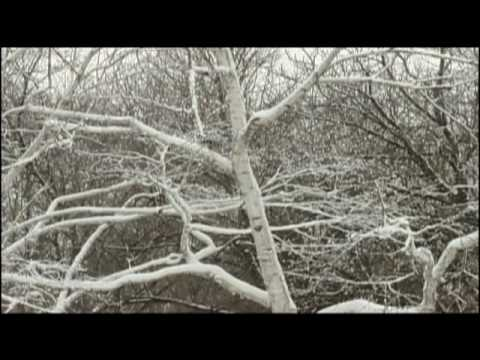 Mary Coyne Rowell Jackman - Film excerpt
