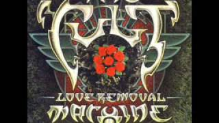 Watch Cult Love Removal Machine video