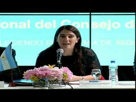 19 de NOV. Reunión Nacional del Consejo de Seguridad Interior. Cecilia Rodríguez.