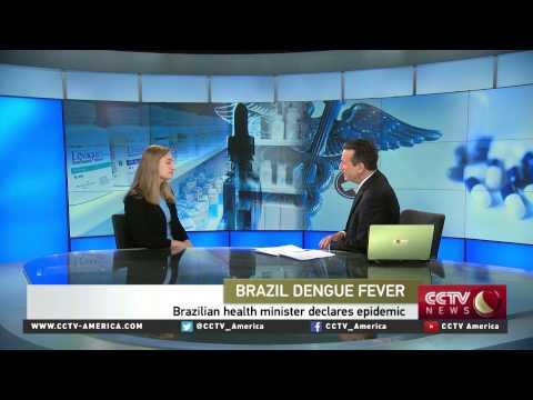 Kathryn Jacobsen of George Mason U. discusses Brazil's dengue fever outbreak