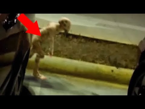 5 Strangest Things Caught In Parking Lots!