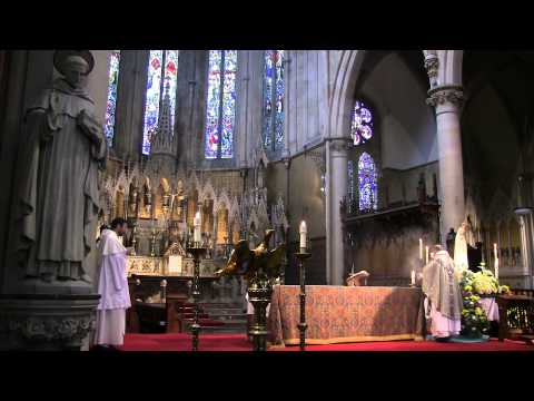 """""""Woman, Behold Thy Son!"""": Sermon by the Very Rev. Timothy Calvert OP. A Day With Mary"""