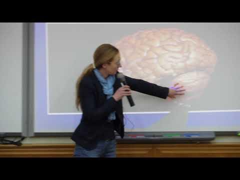 Лекция № 5 Критические вопросы к существующим нейронаучным теориям сознания