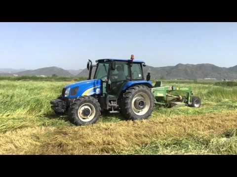 Türkiyede son teknoloji tarım makinaları ile sılaj yapımı