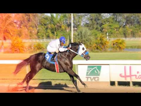 Horse Racing at Hialeah Park
