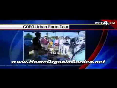 Organic Gardening | Growing fruit and Vegetables