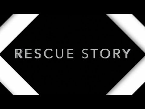 Rescue Story - Zach Williams (Lyrics)