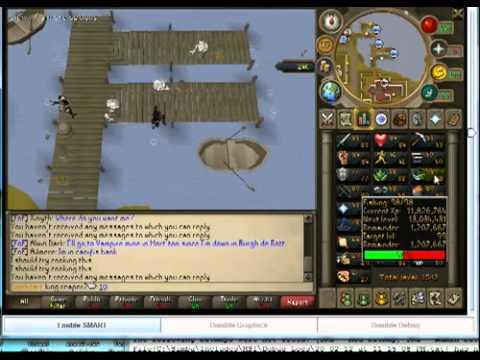 Runescape Bot Working After Bot Nuke (feb 21) video