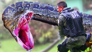 EPIC ANACONDA FIGHTS SOLDIERS!