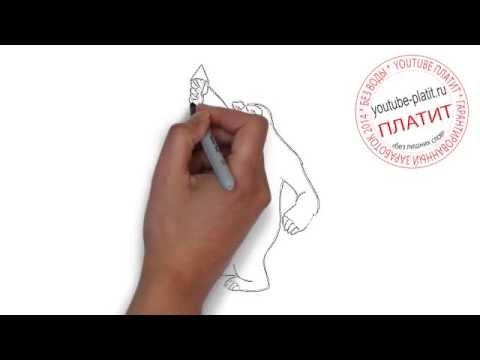 Видео как нарисовать сказку карандашом поэтапно