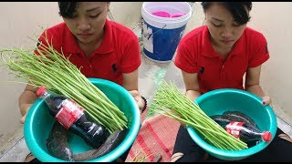download lagu Coca Cola Fish Recipe - Beautiful Girl Cooking Fish gratis