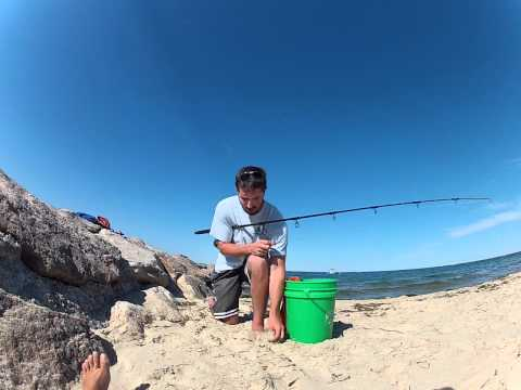 How to Catch Striped Bass | Rigging Live Eels