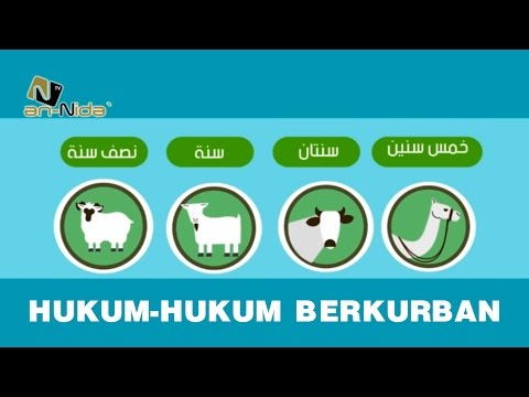 Hukum-hukum Berqurban (Video Animasi)
