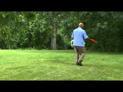How to Water and Fertilize Your Lawn