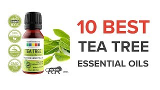 10 Best Tea Tree Essential Oils in India with Price