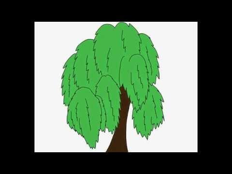 Видео как нарисовать иву