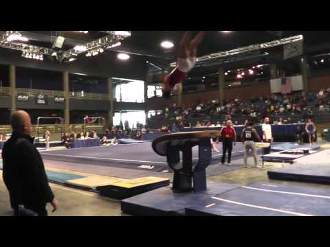 Paul Ruggeri - Vault - 2013 Winter Cup Prelims