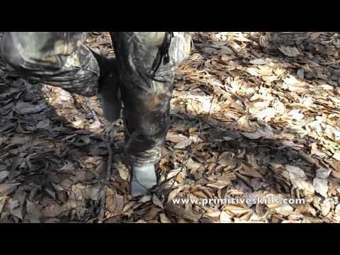 Why walking in woods