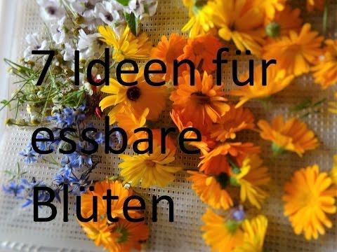 Essbare Blüten - 7 sinnvolle Ideen wie du sie verwenden kannst