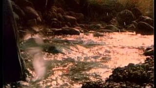 Клип Mr. Credo - Мама Азия