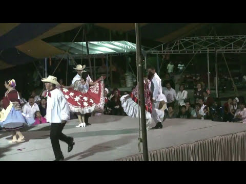 HUAPANGO HUASTECO CAMPEONES DE ESTILO POTOSINO 2010 TEQUISQUIAPAN QRO.mp4
