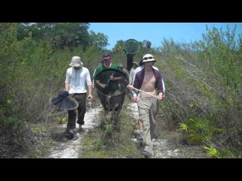 UWE Cuba (HD Edit) - Tropical Forest and Coral Reef Research Expedition