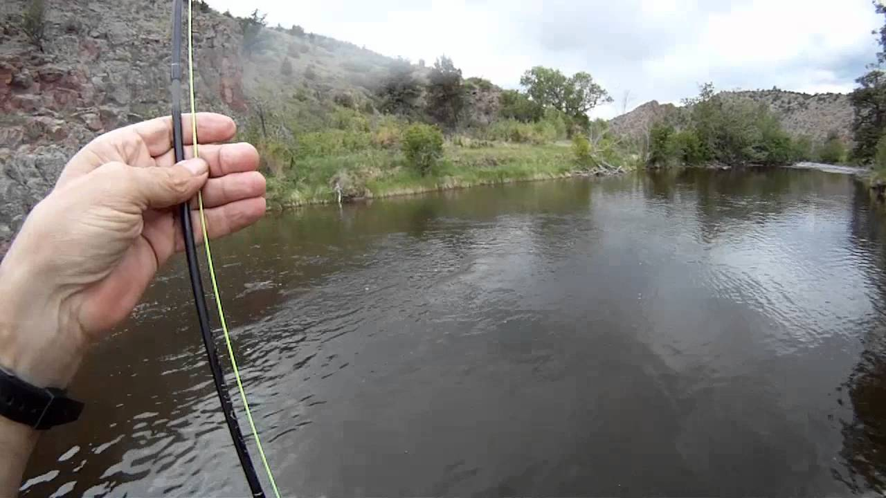 Fly fishing 3wt rod youtube for Youtube trout fishing
