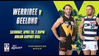 Rd 3: VFL Werribee v Geelong