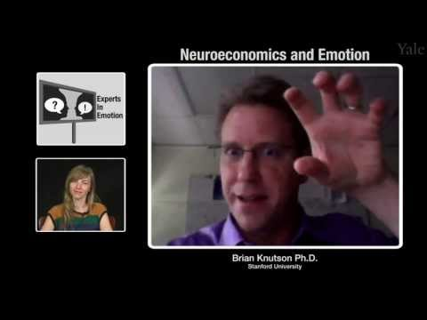 Experts in Emotion 13.3 -- Brian Knutson on Neuroeconomics and Emotion