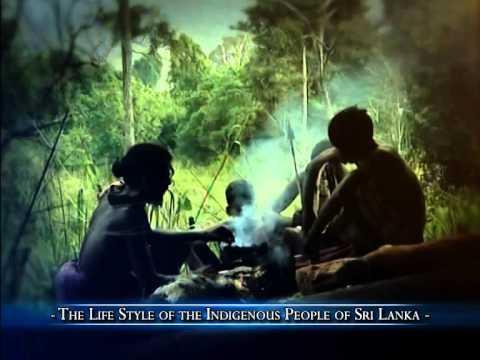 """Vanishing Trails"" – Sri Lanka Rupavahini Corporation, Sri Lanka"