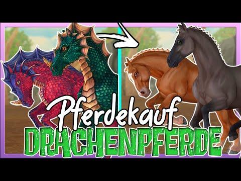 Wir KAUFEN die DRACHENPFERDE Aldrach & Faramawr 🐲↔️🐴 Star Stable Pferdekauf ✅ SSO