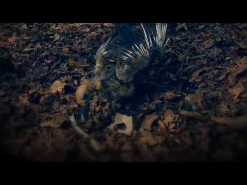 Graham Coxon - Dead Bees