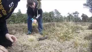 SEARCHING FOR MORE WW2 BOMBS METAL DETECTING (38) UK