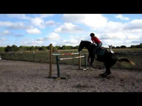 Scarlett a KMSH jumping 4'2