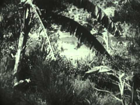 Tarzan the Fearless (1933) - Trailer