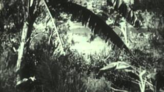 Tarzan the Fearless (1933) - Official Trailer
