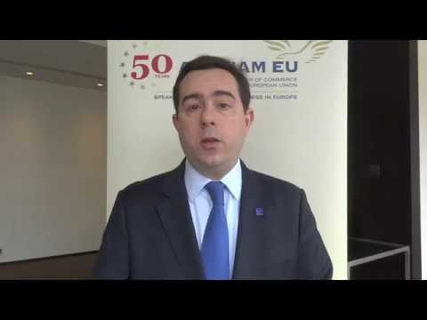 Vice-Minister Notis Mitarachi on TTIP at AmCham EU's Transatlantic Conference 2014