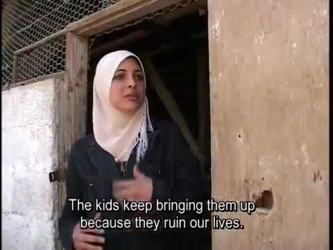 Orthodox Jewish woman harasses Palestinian mother