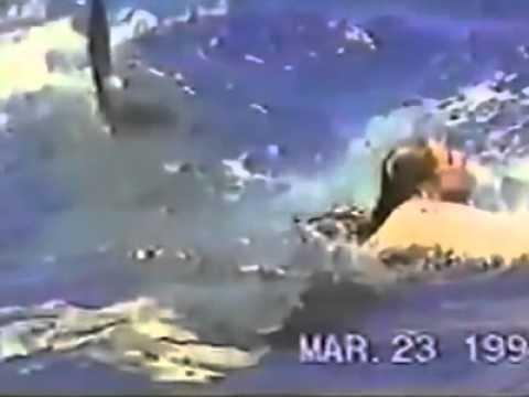 TERRIFYING SHARK ATTACK! WARNING 18+