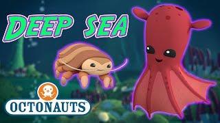 Octonauts - Deep Sea Creatures   Cartoons for Kids   Underwater Sea Education