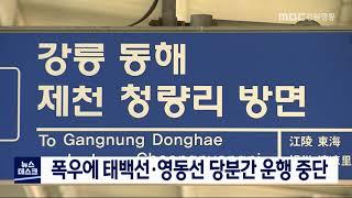 폭우에 태백선·영동선 당분간 운행 중단