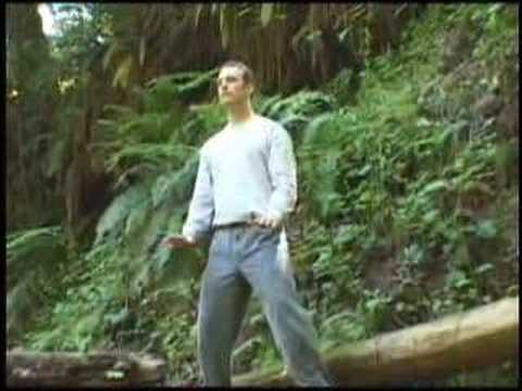 Qi Gong Flow For Beginners with Lee Holden - Teaser