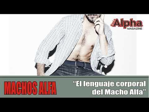 Guia Alpha Magazine