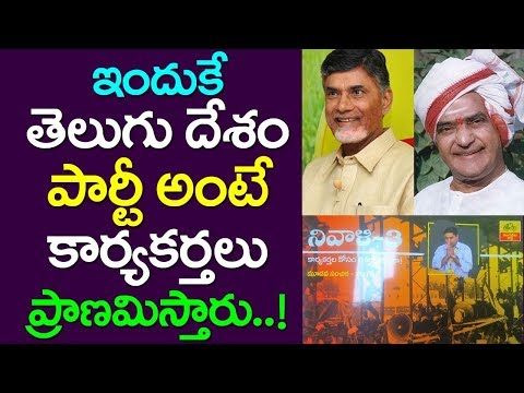 This Is why Cadre Ready To Do Anything For TDP| Excellent Idea By CM Chandrababu| Nara Lokesh| NTR
