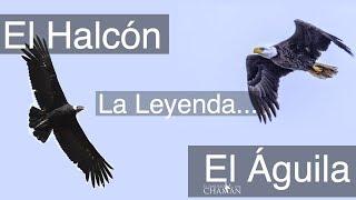 La leyenda del águila y el halcón - Leyenda Sioux
