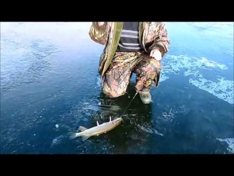 рыбалка в тургае на жерлицы