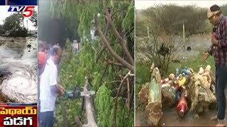 కాకినాడ సమీపంలో పెథాయ్ ప్రభావం | Phethai Toofan Live Updates From Kakinada