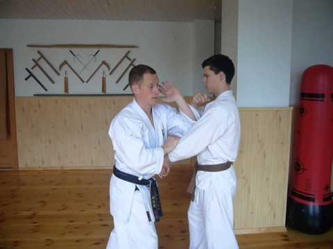 Goju Ryu Karate elbow strike drills Image 1